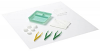 Sage Basic Dressing Pack x 10